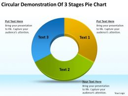 Business Diagram Examples Circular Demonstration Of 3 Stages Pie Chart Powerpoint Slides