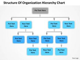 Business Diagram Templates Structure Of Organization Hierarchy Chart Powerpoint Slides
