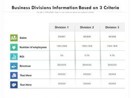 Business Divisions Information Based On 3 Criteria