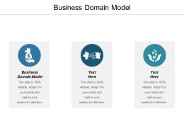 Business Domain Model Ppt Powerpoint Presentation Gallery Example Cpb