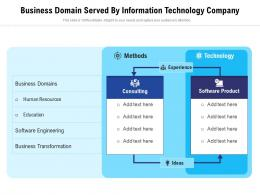 Business Domain Served By Information Technology Company