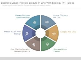 Business Driven Flexible Execute In Line With Strategy Ppt Slides