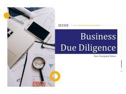 Business Due Diligence Powerpoint Presentation Slides