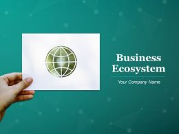 Business Ecosystem Powerpoint Presentation Slides