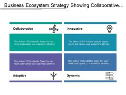 Business Ecosystem Strategy Showing Collaborative Adaptive Dynamic Innovative Aspects