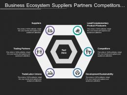 Business Ecosystem Suppliers Partners Competitors Producers Sustainability