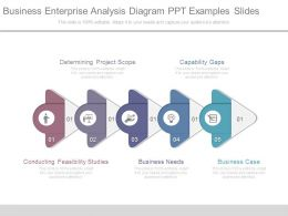 Business Enterprise Analysis Diagram Ppt Examples Slides