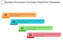 Business Environment Conclusion Powerpoint Presentation