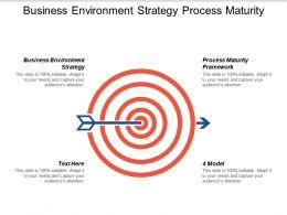 Business Environment Strategy Process Maturity Framework 4 Model Cpb