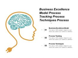 Business Excellence Model Process Tracking Process Techniques Process Governance Cpb