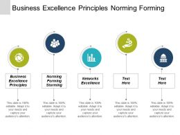 Business Excellence Principles Norming Forming Storming Networks Excellence Cpb