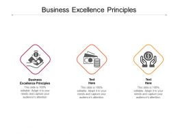 Business Excellence Principles Ppt Powerpoint Presentation Styles Cpb