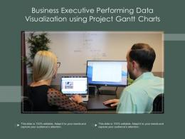 Business Executive Performing Data Visualization Using Project Gantt Charts