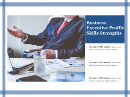 Business Executive Profile Skills Strengths