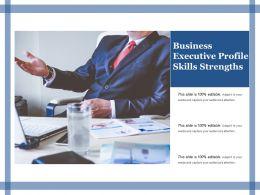 business_executive_profile_skills_strengths_Slide01