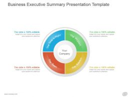 Business Executive Summary Presentation Template