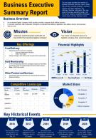 Business Executive Summary Report Presentation Report Infographic PPT PDF Document