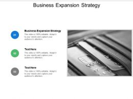 Business Expansion Strategy Ppt Powerpoint Presentation File Outline Cpb