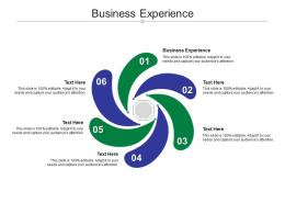 Business Experience Ppt Powerpoint Presentation Outline Format Ideas Cpb