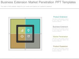 Business Extension Market Penetration Ppt Templates