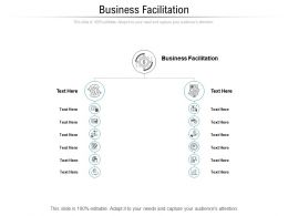 Business Facilitation Ppt Powerpoint Presentation Layouts Aids Cpb
