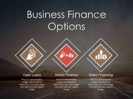 Business Finance Options Powerpoint Presentation