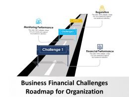 Business Financial Challenges Roadmap For Organization