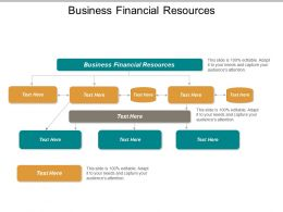 Business Financial Resources Ppt Powerpoint Presentation Gallery Professional Cpb