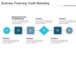 Business Financing Credit Marketing Ppt Powerpoint Presentation Gallery Slides Cpb