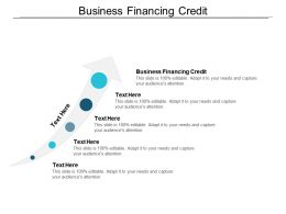Business Financing Credit Ppt Powerpoint Presentation Gallery Styles Cpb