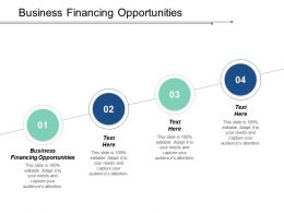 Business Financing Opportunities Ppt Powerpoint Presentation Gallery Good Cpb