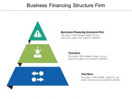 Business Financing Structure Firm Ppt Powerpoint Presentation Gallery Graphics Cpb