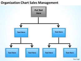 Business Flow Chart Origanization Sales Management Powerpoint Templates