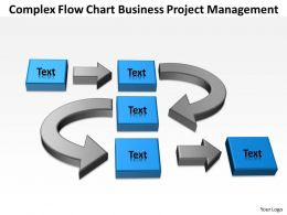 Business Flow Diagram Example Complex Chart Project Management Powerpoint Templates