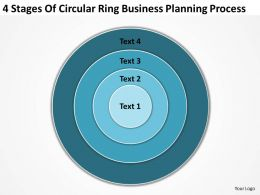 Business Flow Diagram Example Of Circular Ring Planning Process Powerpoint Templates
