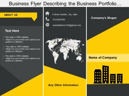 Business Flyer Describing The Business Portfolio In Depth Detail
