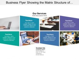 Business Flyer Showing The Matrix Structure Of Services Of Company