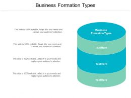 Business Formation Types Ppt Powerpoint Presentation Portfolio Professional Cpb