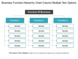 Business Function Hierarchy Chart Column Multiple Text Options