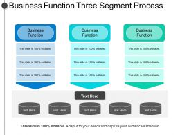 Business Function Three Segment Process