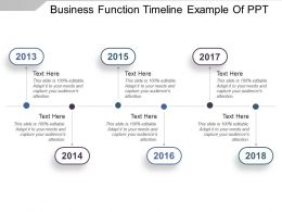 Business Function Timeline Example Of Ppt