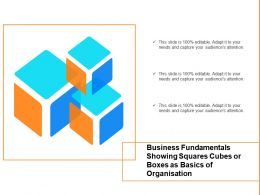 Business Fundamentals Showing Squares Cubes Or Boxes As Basics Of Organisation