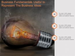 Business Fundamentals Useful To Represent The Business Ideas
