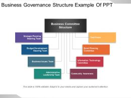 Business Governance Structure Example Of Ppt