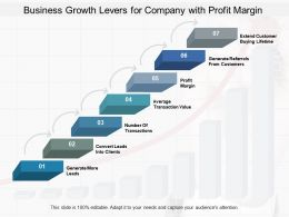 Business Growth Levers For Company With Profit Margin