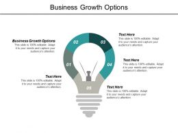 Business Growth Options Ppt Powerpoint Presentation Outline Display Cpb