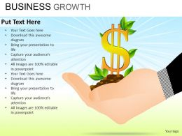 Business Growth Powerpoint Presentation Slides