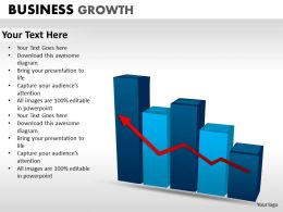 Business Growth ppt 12