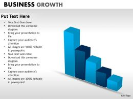 Business Growth ppt 13