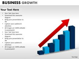 Business Growth ppt 14